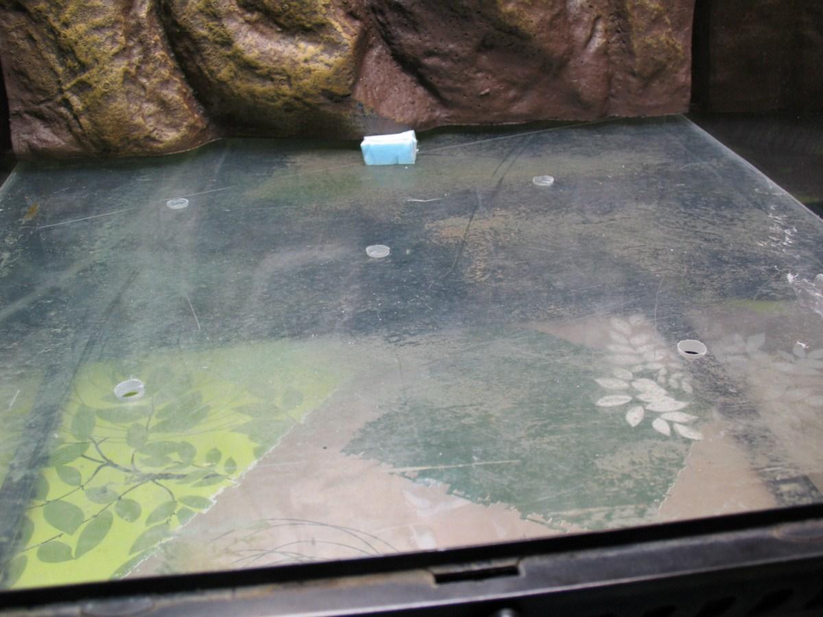 5 trous dans la plaque de plexiglas